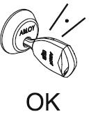 Ключ распознан и принят, замок может быть открыт после сигнала